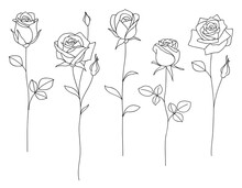 Set Of Decorative Hand Drawn Roses Isolated On White. Flower Icon. Vector Illustration