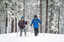 Black Man And White Woman Cross Country Skiing In Woods