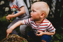 Side View Of Young Male Toddler Collecting Bugs From Rock In Garden