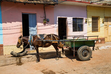 Horse And Cart In Trinidad, Cuba