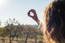 Hand Holding Organic Almond