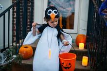 Trick Or Treater Looks Checks His Bounty On Halloween