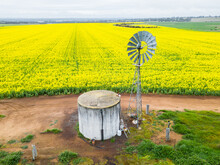 Looking Down On A Water Tank And Windmill On The Edge Of A Paddock Of Yellow Canola