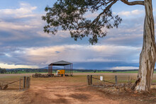 A Gum Tree Overhanging A Farm Gateway And A Shed In The Middle Of A Paddock
