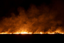 Line Of Bushfire At Night
