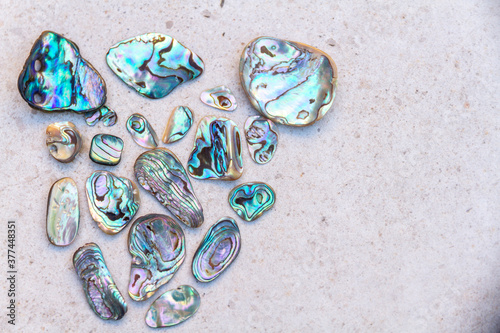 Canvas Print Mother of pearl and abalone shell arrangement