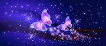 Fantasy Fabulous Butterflies W...