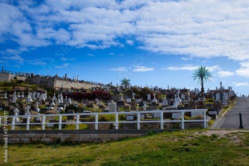 Fototapeta Bronte Beach Cemetery sitting on top of high rock cliffs with magnificent views to the ocean  obraz na płótnie