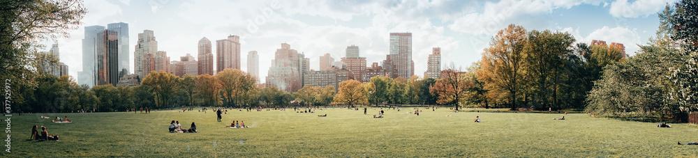 New York Parks