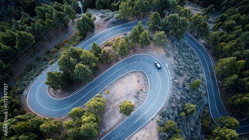 Coche pasando por una carretera sinuosa llena de árboles Wallpaper Mural