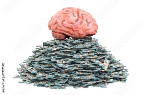 Tela Human brain on the heap of dollar packs, 3D rendering