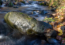 A Water Cascade With Boulders In Autumn Creek With Fallen Leaves On A Rocky Shore. Water Flows Around The Stones In The River.