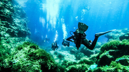 Scubadiving Shipwreck Diving