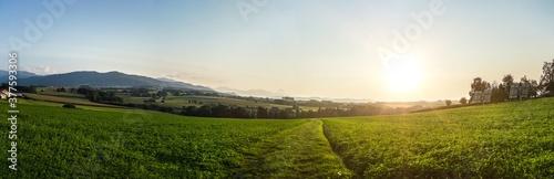 Fotografie, Obraz Panorama Ausblick in Österreich / Österreichische Wiesen Berge und Felder