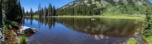 Tablou Canvas Moose Pond, Teton National Park