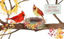 Cute Christmas Or Autumn Scene Of Cardinals Building Their Nest With Red And Yellow Berry Decorations, Thanksgiving Watercolor Floral Illustration