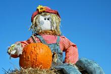 Homemade Scarecrow And Pumpkin Against A Vivid Blue Sky.
