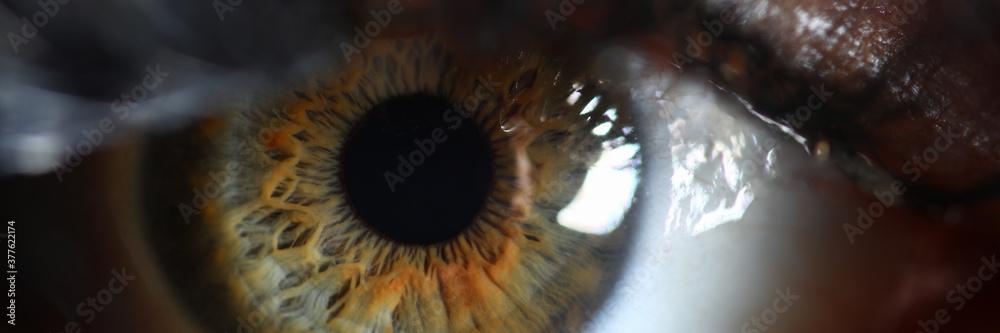 Leinwandbild Motiv - H_Ko : Human green eye retina supermacro closeup background. Check vision concept