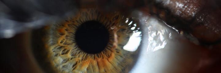 Human green eye retina supermacro closeup background. Check vision concept