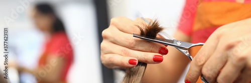 Female hairdresser hand hold strand of hair closeup Fototapet