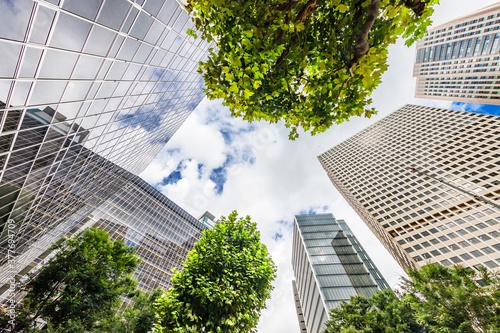 Fotografie, Obraz 新緑が綺麗な東京のビル群