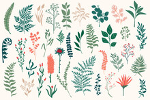 Wildflower Decorative Elements Set. Isolated Pack Of Botanical Clipart For Xmas Prints. Color Branches, Flowers And Herbs Vector Illustration. Perfect For Christmas Greeting Cards And Patterns.
