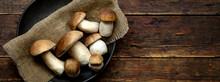 Fresh Forest Mushrooms /Boletu...