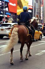 Portrait Of Horse Mounted Poli...