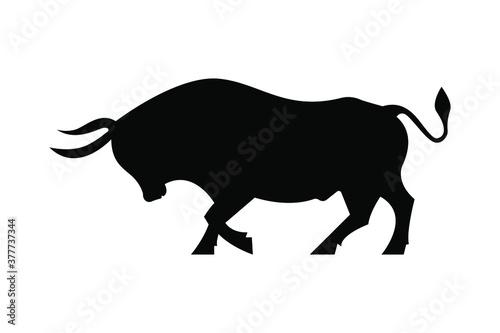 Stampa su Tela bull on white background