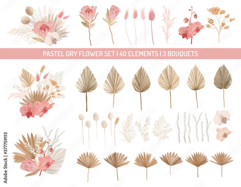 Fototapeta Elegant dry protea flowers, palm leaves, pale orchid, eucalyptus, dried tropical leaves, floral elements.Trendy winter, autumn wedding bouquets, vintage decoration. Vector isolated illustration set