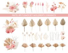 Elegant Dry Protea Flowers, Pa...