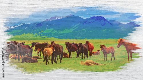 Herd of horses in the mountains in Iceland, watercolor painting Canvas