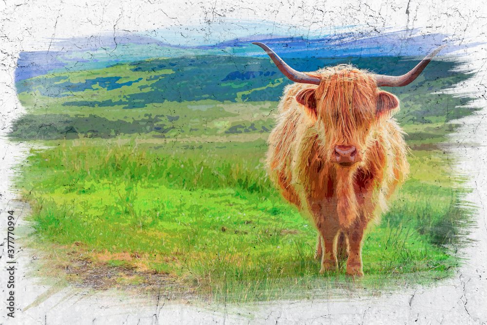Obraz Brown highland cow in Isle of Skye, Scotland, watercolor painting fototapeta, plakat