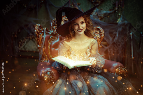 Fotografie, Tablou fairy with magic book