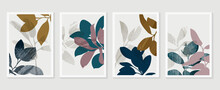 Botanical Wall Art Vector Set....