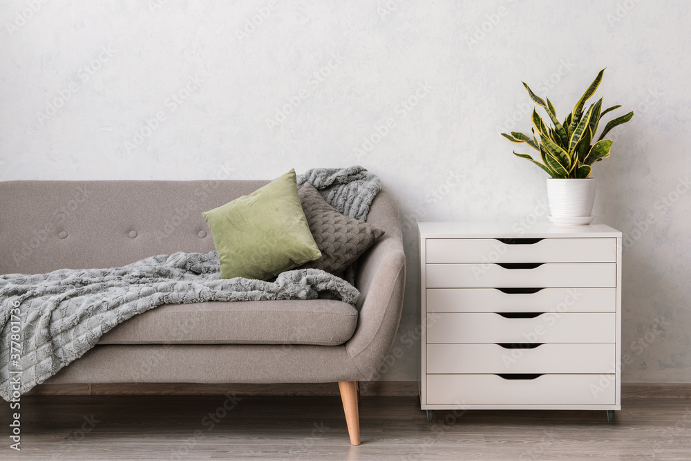 Fototapeta Modern chest of drawers with sofa and houseplant near light wall in room