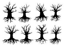 Dead Tree Isolated Silhouettes...