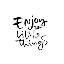 Enjoy The Little Things. Hand Drawn Modern Brush Lettering. Typography Banner. Ink Vector Illustration.