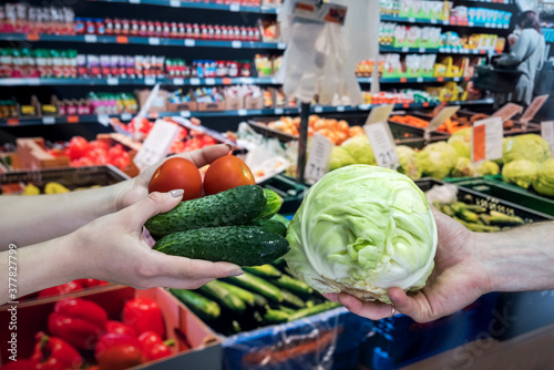 Fototapeta seller gives vegetables to the buyer in the store. the concept of shopping and a healthy lifestyle obraz