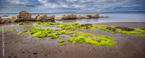 Photo Panoramic view of beach with seaweed and rocks at the  west coast of the isle of
