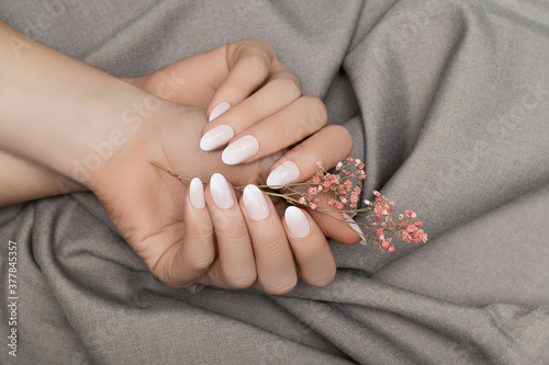 Female hands with white nail design. Female hands holding pink autumn flower. Woman hands on grey fabrick background