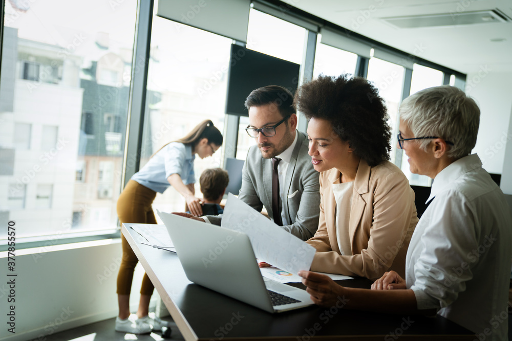Fototapeta Portrait of successful business team working in office
