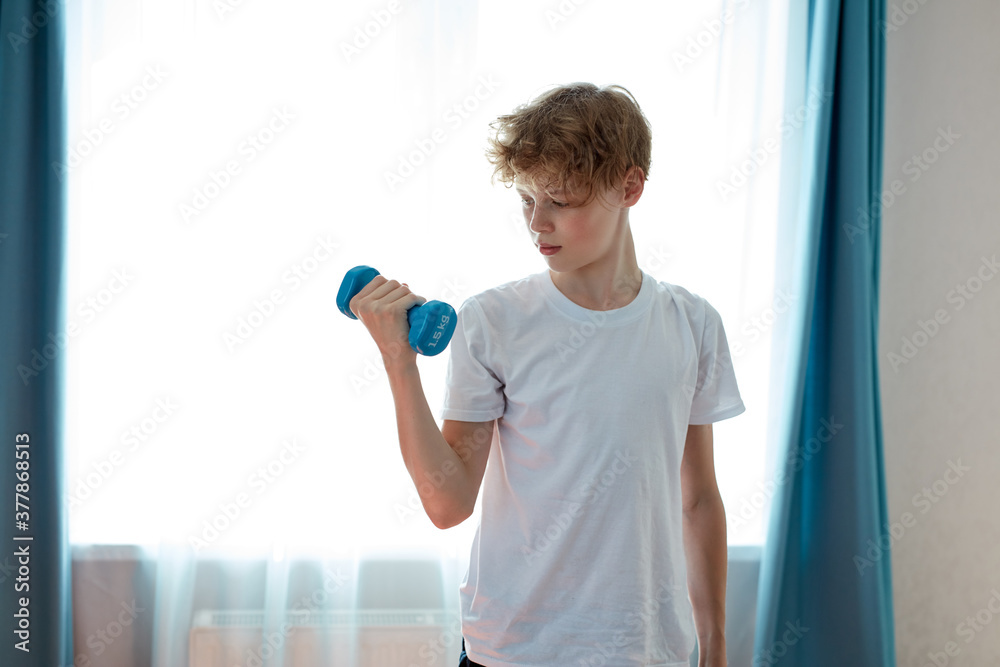 Fototapeta young caucasian strong teenager boy exercising at home, hold dumbbells in hands, pumping arm muscles. sport concept