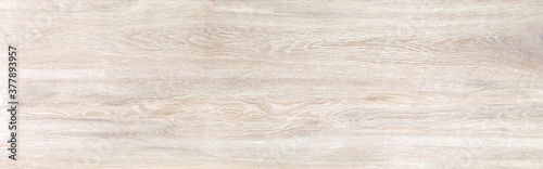 Wood texture background.Natural wood pattern. texture of wood Wallpaper Mural