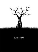 Shape Of Naked Tree. Vector Ou...