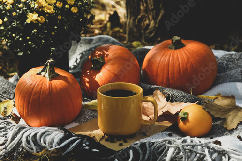 Fototapeta Cozy autumn concept with pumpkins and cup of coffee outdoor obraz