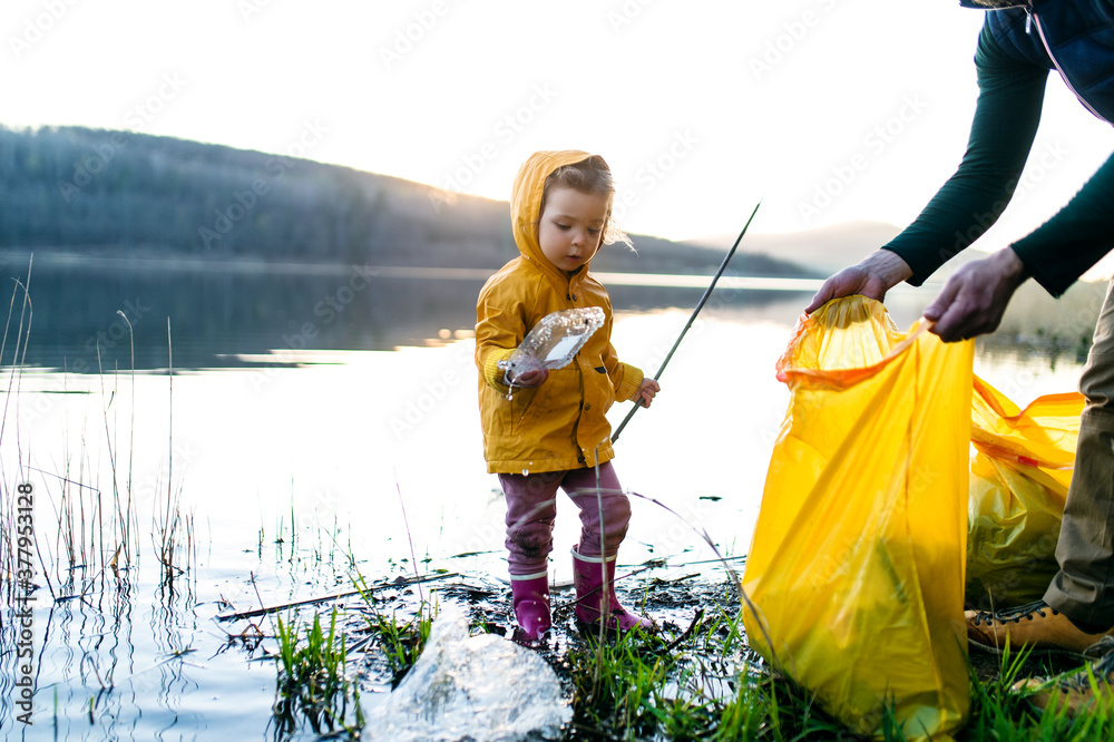 Fototapeta Father with small daughter collecting rubbish outdoors in nature, plogging concept.