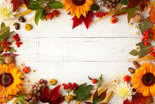Fototapeta Autumn frame with wheat ears, sunflowers, leaves and berries on white wooden table. Flat lay, copy space. Concept of fall harvest or Thanksgiving day. obraz