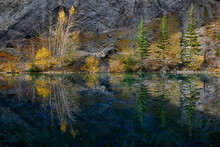 Symmetrical Reflections Of Fall Trees On Grassi Lakes Canmore