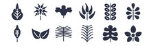 12 Pack Of Black Filled Icons. Glyph Icons Such As Chestnut Leaf, Yew Leaf, Bilberry Leaf, Briar Willow Gooseberry Nut For Web And Mobile Apps, Logo